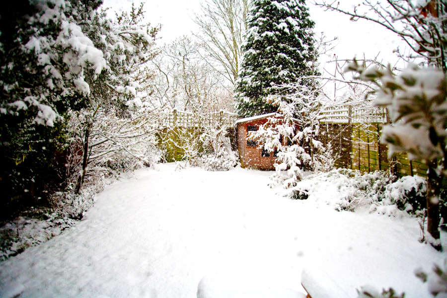 Gardeners: 10 Ways to Beat The Winter Blues
